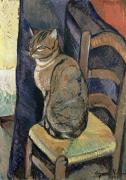 Oil Cat Paintings - Study of A Cat by Suzanne Valadon