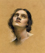 Female Pastels Metal Prints - Study of a head Metal Print by Evelyn De Morgan