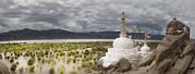 Tibetan Buddhism Framed Prints - Stupas And Small Shrines Framed Print by Phil Borges