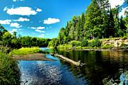Sturgeon River In Summer Print by Matthew Winn