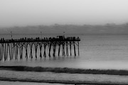 Pleasure Photos - Subtle Pier by Betsy A Cutler East Coast Barrier Islands