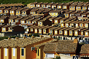Conformity Photos - Suburbian houses in rows by Sami Sarkis