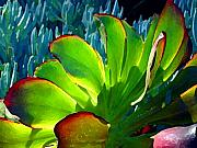 Succulents Landscape Posters - Succulent Backlit on Blue 5 Poster by Amy Vangsgard