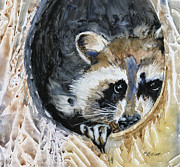 Raccoon Painting Framed Prints - Such a Rascal Framed Print by Marsha Elliott