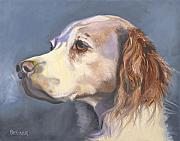 Animal Greeting Cards Drawings Posters - Such a Spaniel Poster by Susan A Becker