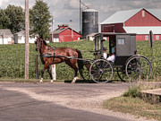 Amish Family Art - Such grace - such serenity by David Bearden