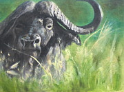 Cape Buffalo Paintings - Sudden Arrival by John  Tukey