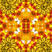 Mother Gift Art - Sudden Heat Mandala by Zeana Romanovna