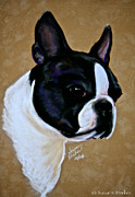 Dog Study Art - Suedes Grandson by Susan Herber