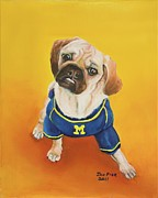 University Of Michigan Framed Prints - Sugar Framed Print by Jan Fink