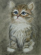 Cute Cat Pastels Prints - Sugar Print by Kim Shayler