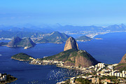 Natural Landmark Prints - Sugar Loaf Print by Antonello