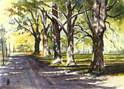 Dirt Road Paintings - Sugar Maples by John Pirnak