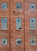 Disrepair Metal Prints - Sugar Mill Broken Windows Metal Print by James Bo Insogna