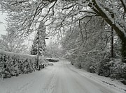 Snowy Roads Photo Posters - Sugar Road Ii Poster by Rdr Creative