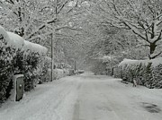 Snowy Roads Photo Posters - Sugar Road Poster by Rdr Creative