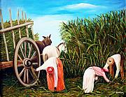 Cuban Framed Prints - Sugarcane worker 1 Framed Print by Jose Manuel Abraham