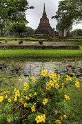 Temple Digital Art Prints - Sukhothai Historical Park Print by Adrian Evans