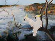 Cockatoo Originals - Sulphur Crested Cockatoos in The Blue Mountains by Mike Paget