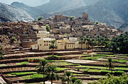 Sultanat D'oman Print by Micheline Canal