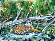 Zoo Animals Paintings - Sumatran Tiger at Point Defiance Zoo by Zaira Dzhaubaeva