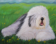 Sheepdog Posters - Summer Afternoon Poster by Sharon Nummer