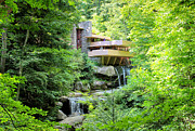 Rcnaturephotos Photos - Summer at Fallingwater by Rachel Cohen