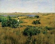 America Paintings - Summer at Shinnecock Hills by William Merritt Chase