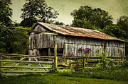 Tennessee Barn Digital Art Posters - Summer Beauty Poster by Elizabeth Wilson