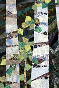 Tree  Tapestries - Textiles Metal Prints - Summer Birches Metal Print by Linda Beach