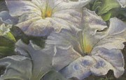 Blooms Pastels - Summer Blooms by Bill Puglisi