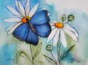 Marguerites Framed Prints - Summer Blue Framed Print by Jutta Maria Pusl