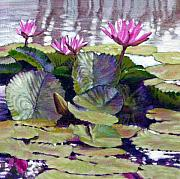 Water Lilies Paintings - Summer Breeze by John Lautermilch