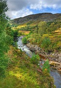John Kelly Prints - Summer colour in the Glen Print by John Kelly