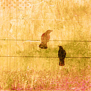 Weathered Digital Art Prints - Summer Crows Print by Carol Leigh