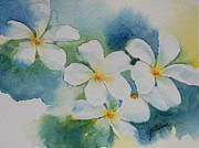 Plumeria Paintings - Summer Day by Gretchen Bjornson