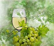 White Grape Prints - Summer Evening Print by Manfred Lutzius