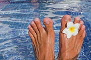 Water Flower Posters - Summer Feet Poster by Alex Bramwell