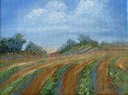 Landscape Posters Originals - Summer Fields by Sally Simon