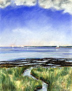 Massachusetts Pastels - Summer Flats by Paul Gardner