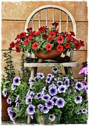 Julie Williams Metal Prints - Summer Garden Metal Print by Julie Williams