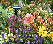 Birdbath Prints - Summer Garden Print by Sue  Brehant