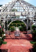 Lattice Framed Prints - Summer Gazebo of Franklin Park Conservatory Framed Print by Mindy Newman
