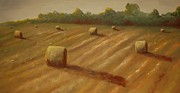 Old Barns Paintings - Summer Hay by Jane  Harris