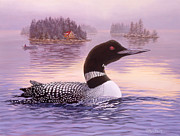 Loon Painting Framed Prints - Summer Haze Framed Print by Richard De Wolfe
