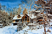 Architectural Art - Summer House Portrait in Winter by Hanne Lore Koehler