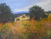 Juniper Paintings - Summer in New Mexico by Stana Stoker