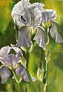 Faa Painting Prints - Summer Irises Print by Alfred Ng