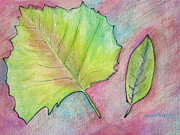 Philadelphia Painting Prints - Summer Leaves Print by Marita McVeigh