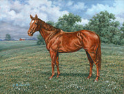 Quarterhorse Posters - Summer Pasture Poster by Richard De Wolfe